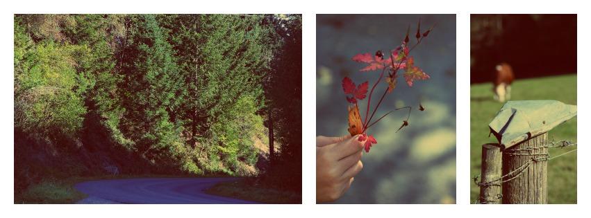 collage Be happy à la montagne 2