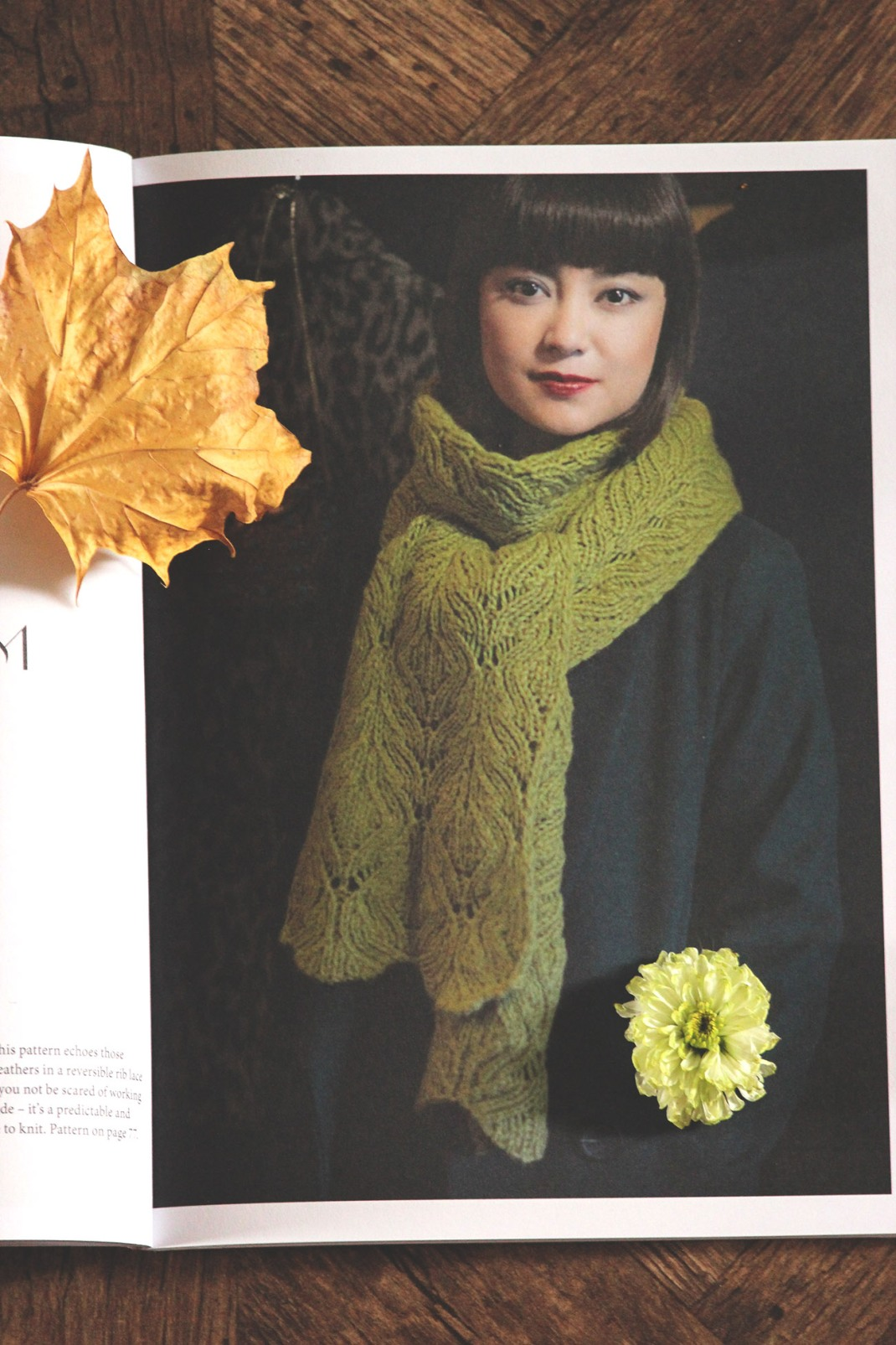 Pompom quarterly issue 15 Winter 2015 PurPle Laines (4)