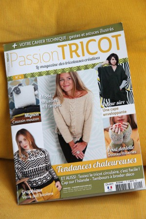 magazine Passion Trico 4 decembre 2015 PurPle Laines 5